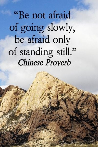 do not be afraid of going slowly, be afraid only of standing still
